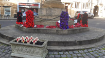 Purple poppies inspire tributes to animals in war