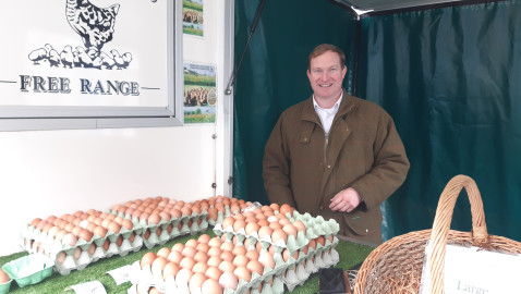 Healthy and happy hens make good eggs